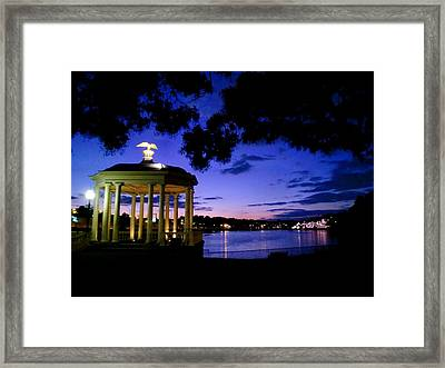 Waterworks At Night Framed Print by Andrew Dinh