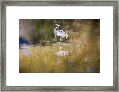 Watery World - Framed Print