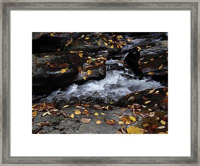 Watkins Glen 1 Framed Print by Vilas Malankar