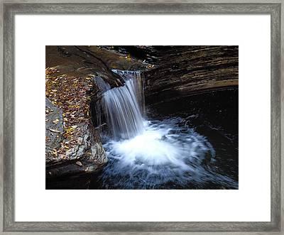 Watkins Glen 2 Framed Print by Vilas Malankar