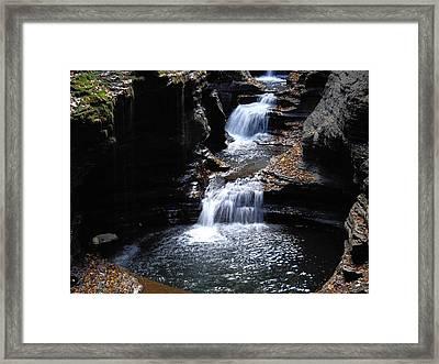 Watkins Glen 3 Framed Print by Vilas Malankar