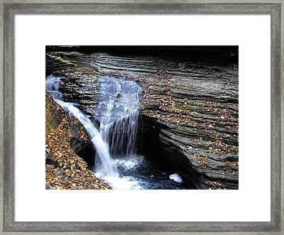 Watkins Glen 4 Framed Print by Vilas Malankar