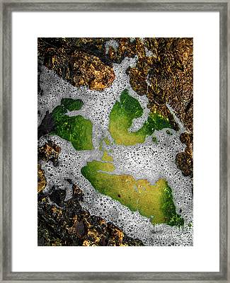 Framed Print featuring the photograph Watty1 by Cazyk Photography