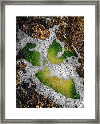 Watty1 Framed Print