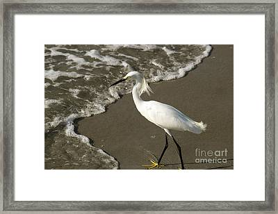 Wave And Snowy Framed Print