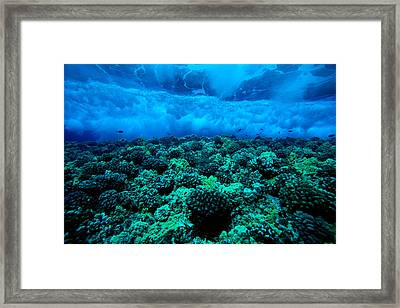 Wave Breaking Framed Print by Dave Fleetham - Printscapes