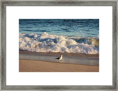 Waves Crashing  Framed Print