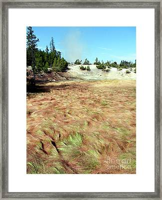 Waves Of Grass Framed Print