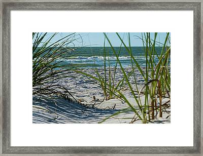 Waves Through The Grass Framed Print