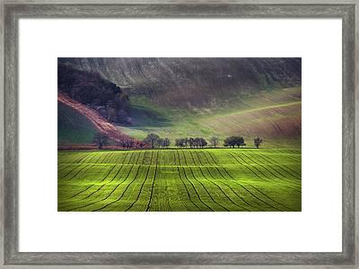 Wavy Hills  Framed Print