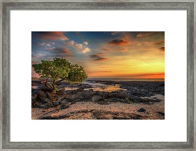 Framed Print featuring the photograph Wawaloli Beach Sunset by Susan Rissi Tregoning