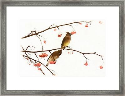 Waxwing Wonders Framed Print