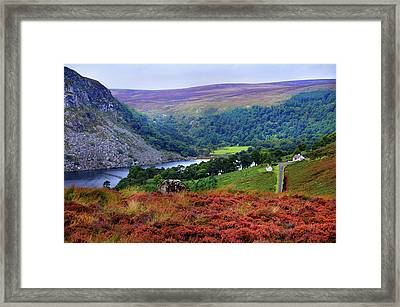 Framed Print featuring the photograph Way Home. Wicklow. Ireland by Jenny Rainbow