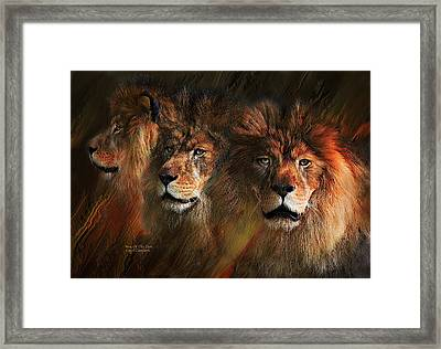 Way Of The Lion Framed Print