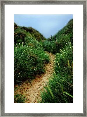 Way Through The Dunes Framed Print by Hannes Cmarits