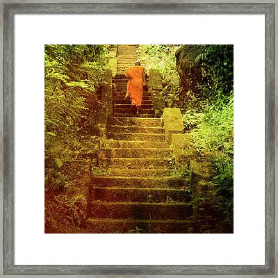 Way To Buddha's Temple Framed Print by Justyna Lorenc