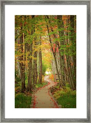 Framed Print featuring the photograph Way To Sieur De Monts  by Emmanuel Panagiotakis