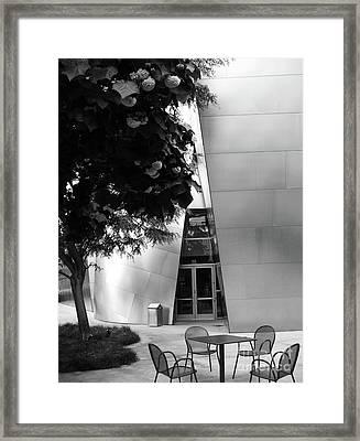 Wdch No12 Framed Print by Mic DBernardo
