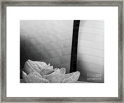 Wdch No13 Framed Print by Mic DBernardo