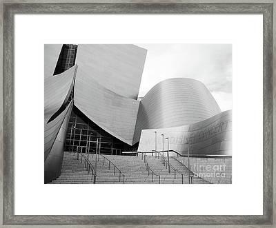 Wdch No15 Framed Print by Mic DBernardo