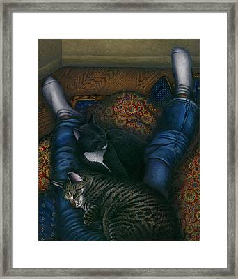 We 3 Nap With My Cats Framed Print by Carol Wilson
