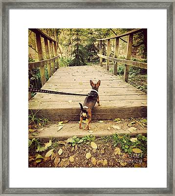 We All Have Our Paths Framed Print