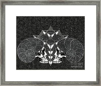 We Are Cosmos Framed Print by Kyle Redding