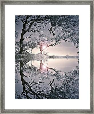 Framed Print featuring the photograph We Are In This Together by Tara Turner