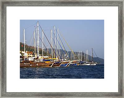 We Are Sailing Framed Print by Svetlana Sewell