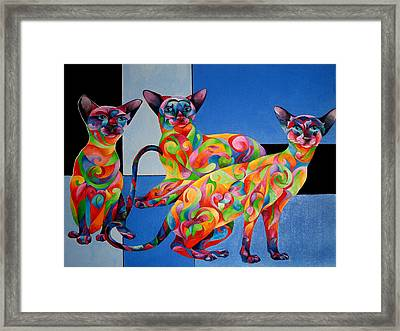 We Are Siamese If You Please Framed Print by Sherry Shipley