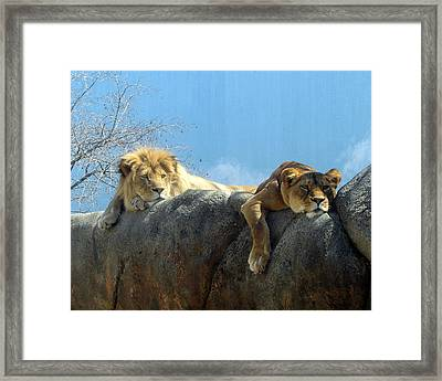 We Are Tired Framed Print