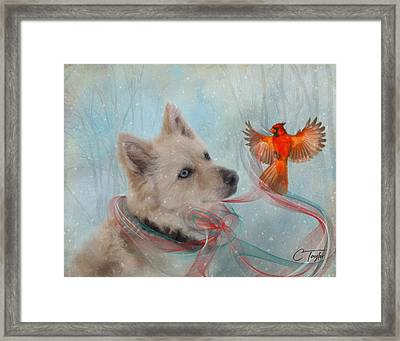 We Can All Get Along Framed Print by Colleen Taylor