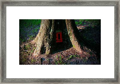We Could Dream It To Be If We Lived In A Tree Framed Print by Darin Baker
