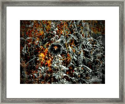 We Fade To Grey Changes Framed Print