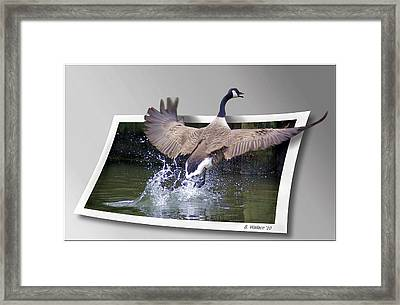 We Have Liftoff Framed Print by Brian Wallace