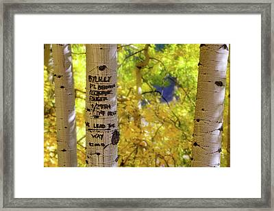 Framed Print featuring the photograph We Lead The Way - Aspens - Colorado - Airborne Ranger by Jason Politte
