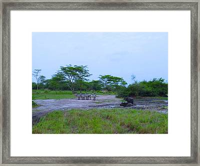 We Live Happily Side By Side Framed Print