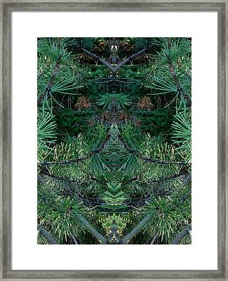 We Live In The Pines Framed Print by Marilynne Bull