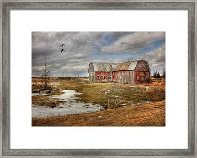 We Lived The Life Framed Print by Lori Deiter