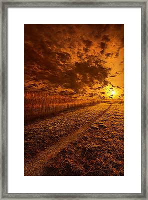 We Ourselves Must Walk The Path Framed Print by Phil Koch