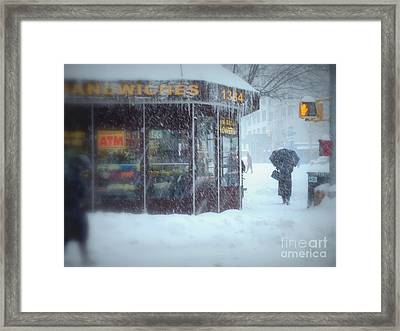 We Sell Flowers - Winter In New York Framed Print