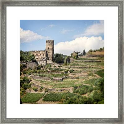 Rhine River Castle And Winery Framed Print