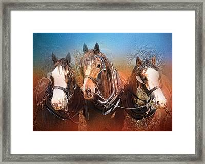 We Three Framed Print