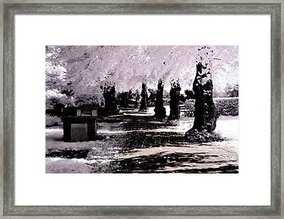 We Will Be Trees Framed Print