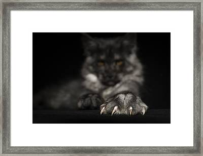 Weapons Framed Print