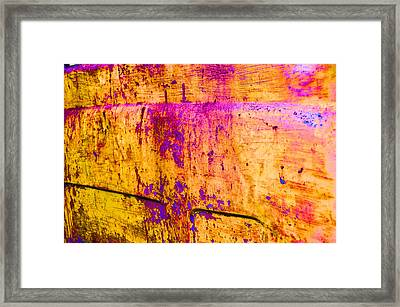 Wear And Tear Of Life Framed Print by Jan Amiss Photography