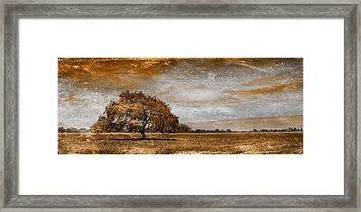 Weathered Framed Print by Az Jackson