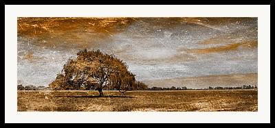 Country Scene Digital Art Framed Prints