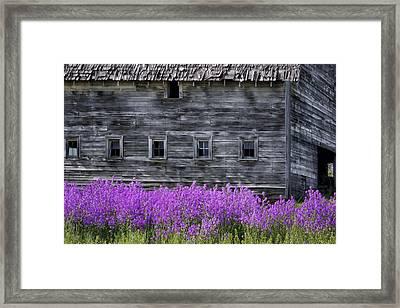 Weathered Barn - Flowers Framed Print by Nikolyn McDonald