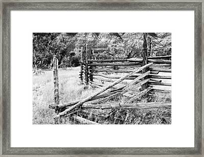 Weathered Fence Framed Print by Larry Ricker